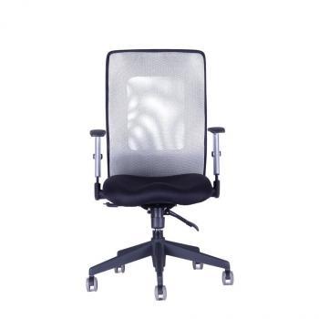 Kancelářská židle CALYPSO XL BP, černý sedák HOBIS
