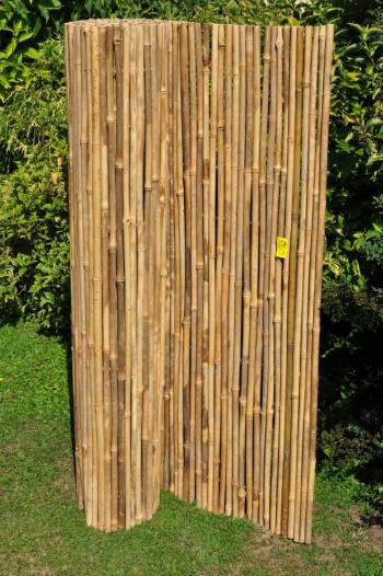 Bambusový plot 100x300 cm Axin Trading s.r.o. 5702