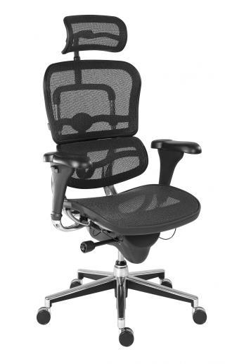 Kancelářská židle (křeslo) s područkami ERGOHUMAN (síťový opěrák+sedák)